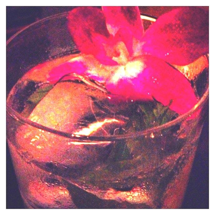 ultimate gin & tonic at SLS Miami